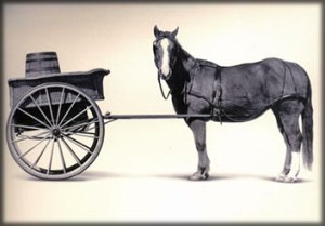 Cart_before_Horse